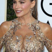 Sofia Vergara big boobs in see through dress on 74th Annual Golden Globe Awards 28x HQ photos