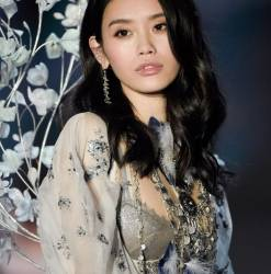 Sui He, Ming Xi sexy lingerie 2017 Victoria's Secret Fashion Show 18x MixQ photos