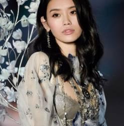 Sui He, Ming Xi sexy lingerie 2017 Victoria's Secret Fashion Show 18x MixQ photos