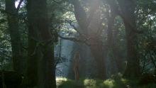 Ida Nielsen - Vikings S04 E11 1080p nude sex naked scenes